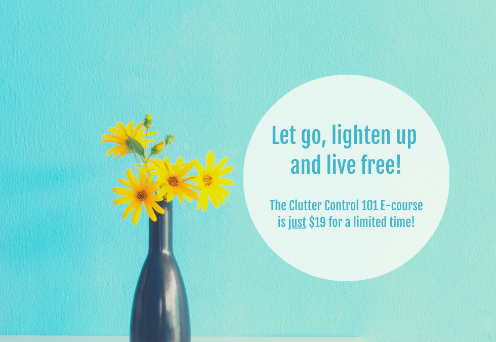 Clutter Control 101 E-Course - Declutter Your Life